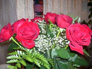 Ariadnes's roses 004